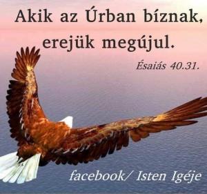 Aki az Úrban bízunk