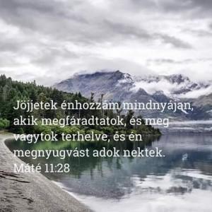 FB_IMG_1558987531582
