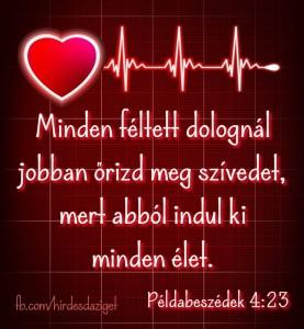 FB_IMG_1565332402234