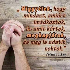 FB_IMG_1565413498267