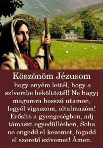 FB_IMG_1567949392601